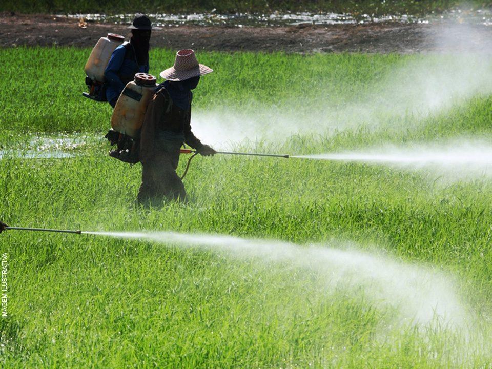 A Aplicação de Herbicida