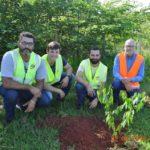 Cleyton, Tiago, Alexandre e Orlando, durante o plantio de mudas nativas.