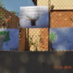 Alunos deixaram cartazes expostos na entrada da escola com informações sobre conscientização ambiental.